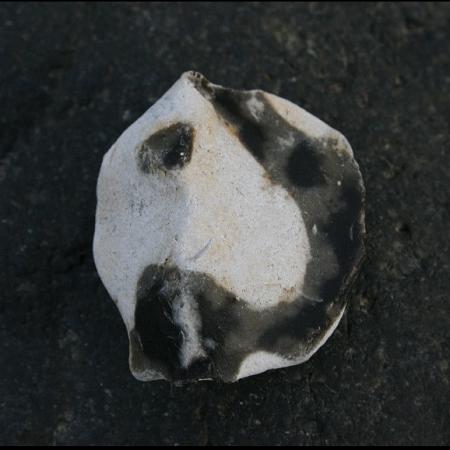 Flint st min 20080915 Ostsee 7115